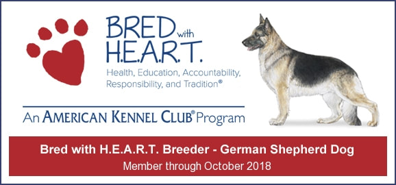 Bred with HEART AKC